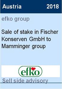 2018 efko Group Mamminger
